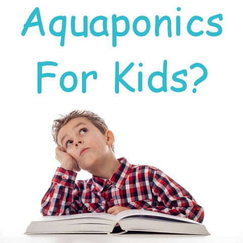 Aquaponics For Kids